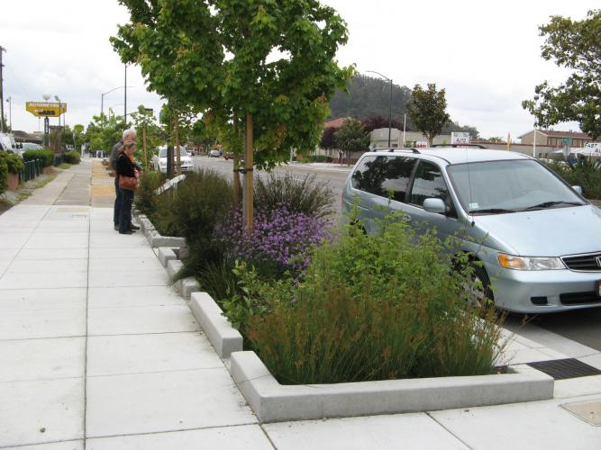 Rain garden on San Pablo Avenue